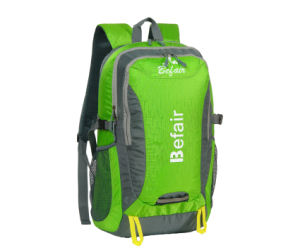 Cool Designer Fashion Laptop Backpack Bags for Men (BH-NH-16028) pictures & photos