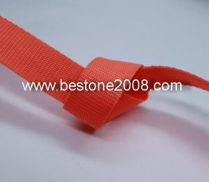 Eco-Friendly PP Webbing Garment Accessories 1603-47 pictures & photos