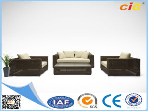 New Brown Convertible Sofa Rattan Wicker pictures & photos