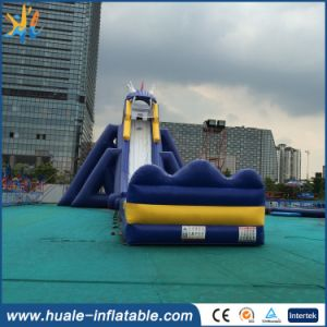 Outdoor Commercial Giant Inflatable Water Slide for Adult with Pool pictures & photos