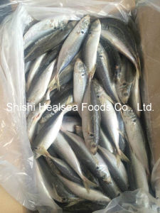 Frozen Yellow Tail Scad Fish for Market pictures & photos