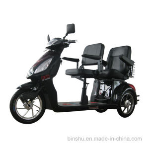 3 Wheel Double Seat Handicapped Scooter pictures & photos