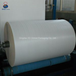 China Manufacturer Cheap 40-230GSM Polypropylene Woven Fabric pictures & photos