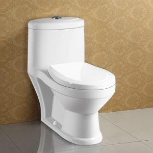 Washdown Water Saving Watermark Two Piece Toilet pictures & photos