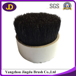 Trustworthy China Supplier Pure Black Boiled Bristles pictures & photos