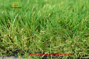 Pets Playing Faux Natural Looking Grass Carpet pictures & photos