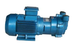 Sk-0.15 Direct Connected Water Ring Vacuum Pump pictures & photos