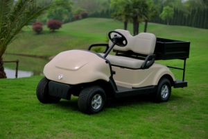 Environmental Friendly Electric Golf Cart with Cargo Box for Sale 2 Passengers (EQ9022(C1))