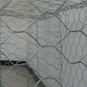 Anti-Flood Bank Protection Hot Galvanized Gabion Wire Mesh Box pictures & photos