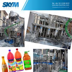 Automatic Fruit Juice Bottling Machine pictures & photos