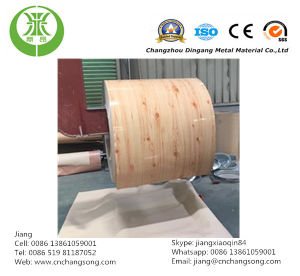 Color Coated Steel Strip (Color Code: 9002) pictures & photos