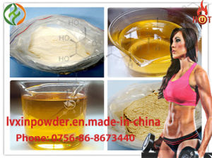 Testosterone Enanthate Bodybuilding Steroid Powder pictures & photos
