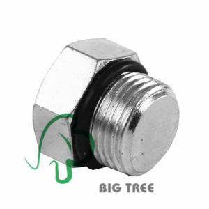 SAE O-Ring Boss Orb to Head Plug (Stainless) pictures & photos