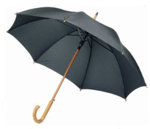 24 Inch Promotional Umbrella Wooden (BR-ST-100) pictures & photos