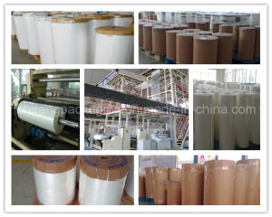 PE Film Rolls for Milk Packaging pictures & photos