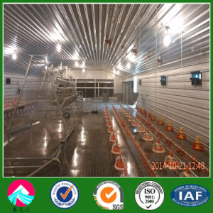 Environment Control Prefabricated Steel Structure Poultry Shed pictures & photos