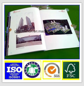 Coated Gloss Art Paper-Glossy 65% pictures & photos