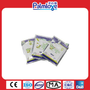 Factory Directly Anti Mosquito Wet Wipes/ Mosquito Repellent Wipes pictures & photos