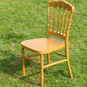 Clear Napoleon Chair for Banquet pictures & photos