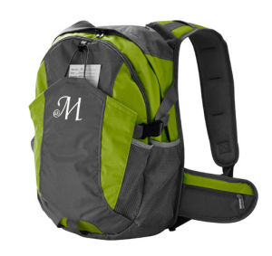 Fashion, Promotional, Hiking, Camping, Laptop, Sports, School Backpacks for College pictures & photos