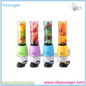 Mini Mixer Blender pictures & photos