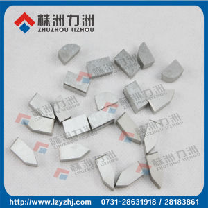 K20 Tungsten Cemented Carbide Saw Teeth for Woodcutting pictures & photos