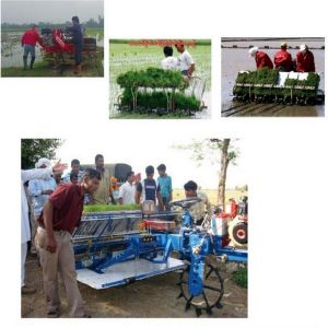 Paddy Wheel Rice Transplanter (2ZT-6300B) pictures & photos