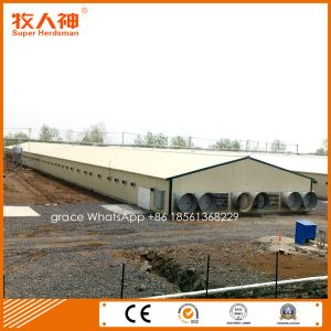 Light Steel Prefab Poultry Shed for with Farming Equipment pictures & photos