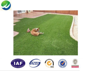 Kindergarten Decoration Synthetic Artificial Turf Manufacture Wy-15 pictures & photos