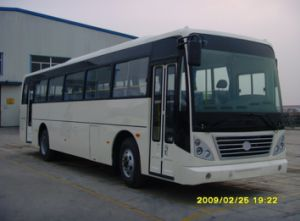 Commuter Bus