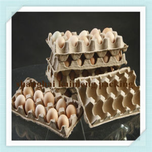 Fancy New Design Cheap Paper Egg Tray for 10PCS Eggs Sale pictures & photos