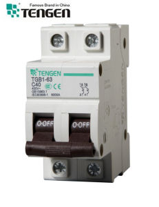 Tgb1-63 Types of Electrical Circuit Breaker pictures & photos