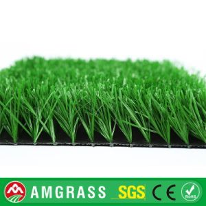 Synthetic Grass for Football, Grass Synthetic