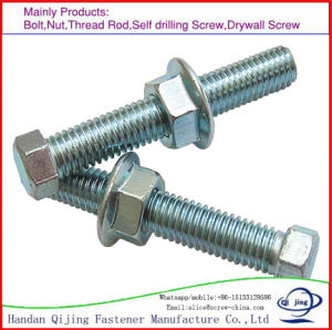 Hex Bolt and Nut, Black/Zinc/Hot Galvanizing/Stainless Steel pictures & photos