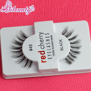 Free Sample 100% Human Hair Eyelash Wholesale pictures & photos