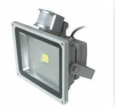 CE RoHS 12V30W LED Flood Light (SP-LF30W)