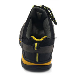 Lightweight Composite Toe and Kevlar Midsole Sport Style Safety Shoes Ss-037 pictures & photos