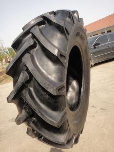 China High Quality 6.00-12, 6.00-14, 6.00-16, 6.50-16 Tractor Tire pictures & photos