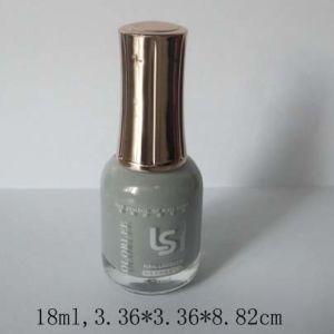 Np531 Long Lasting Quick Dry Nail Polish Nail Varnish