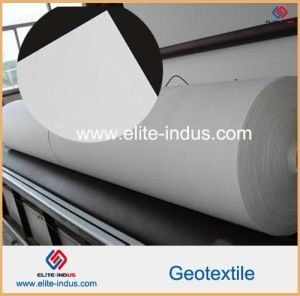 Nonwoven Filament Polyester Geotextile for Landfilling pictures & photos