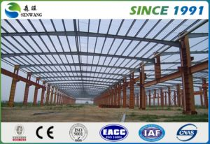 OEM/ODM Steel Construction with Crane pictures & photos