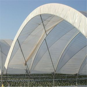Factory Direct Sale Low Cost Polyethylene Film Greenhouse for Agricultural pictures & photos