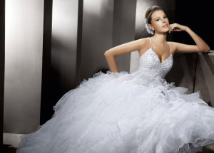 Heavy Beaded Ruffle Organza Bridal Wedding Dresses (AL004) pictures & photos
