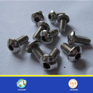 Stainless Steel Carbon Steel Zinc or Black Socket Screw pictures & photos