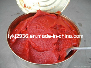 Canned Tomato in 850g