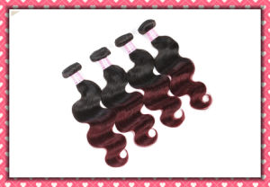 Hot Peruvian Virgin Hair Body Wave 18inches Ombre Color pictures & photos