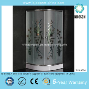 High Quality Easy Installation Shower Enclosure (BLS-9604) pictures & photos