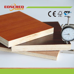 Bintangor Plywood / Okoume Plywood/Commercial Plywood with BB/CC Grade pictures & photos