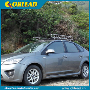 Best Quality Good Price Steel Roof Cargo Rack (RR86)