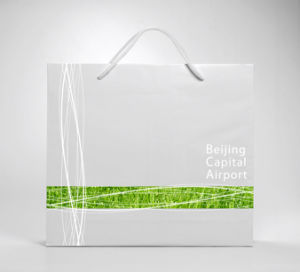 OEM High Quality Eco-Friendly Paper Bags pictures & photos